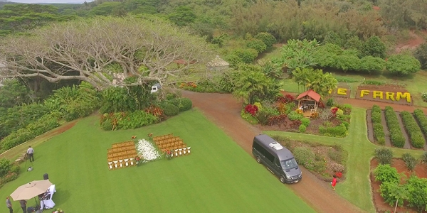 Aerial View Of a Tropical Farm Wedding in Kauai