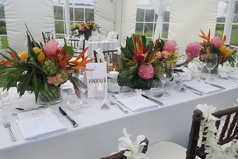 Exotic Tropical Flowers Adorn Tabletop, with White Orchid Lei Draped on Dark Wood Chairs