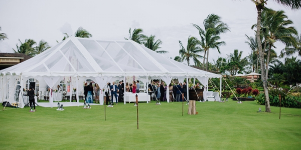 Clear Top Tents  Set Amid Tropical Palm Trees Are Ideal for a Wedding Reception