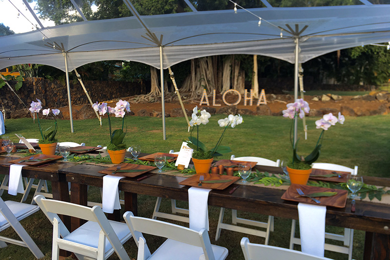 Backyard Banquet Under A Clear Top Tent, Farm Tables and Lots of Hawaiian touches!  ALOHA Marquee by Banyan Tree in Background.