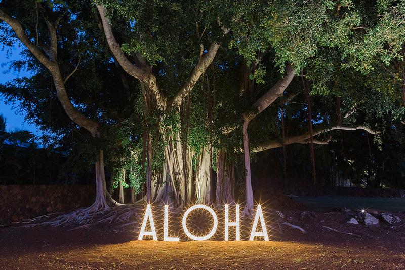 Greet Guests With A Brightly Lit Aloha Marquee, Anchored at The Base of The Tree of Life - The Banyan Tree
